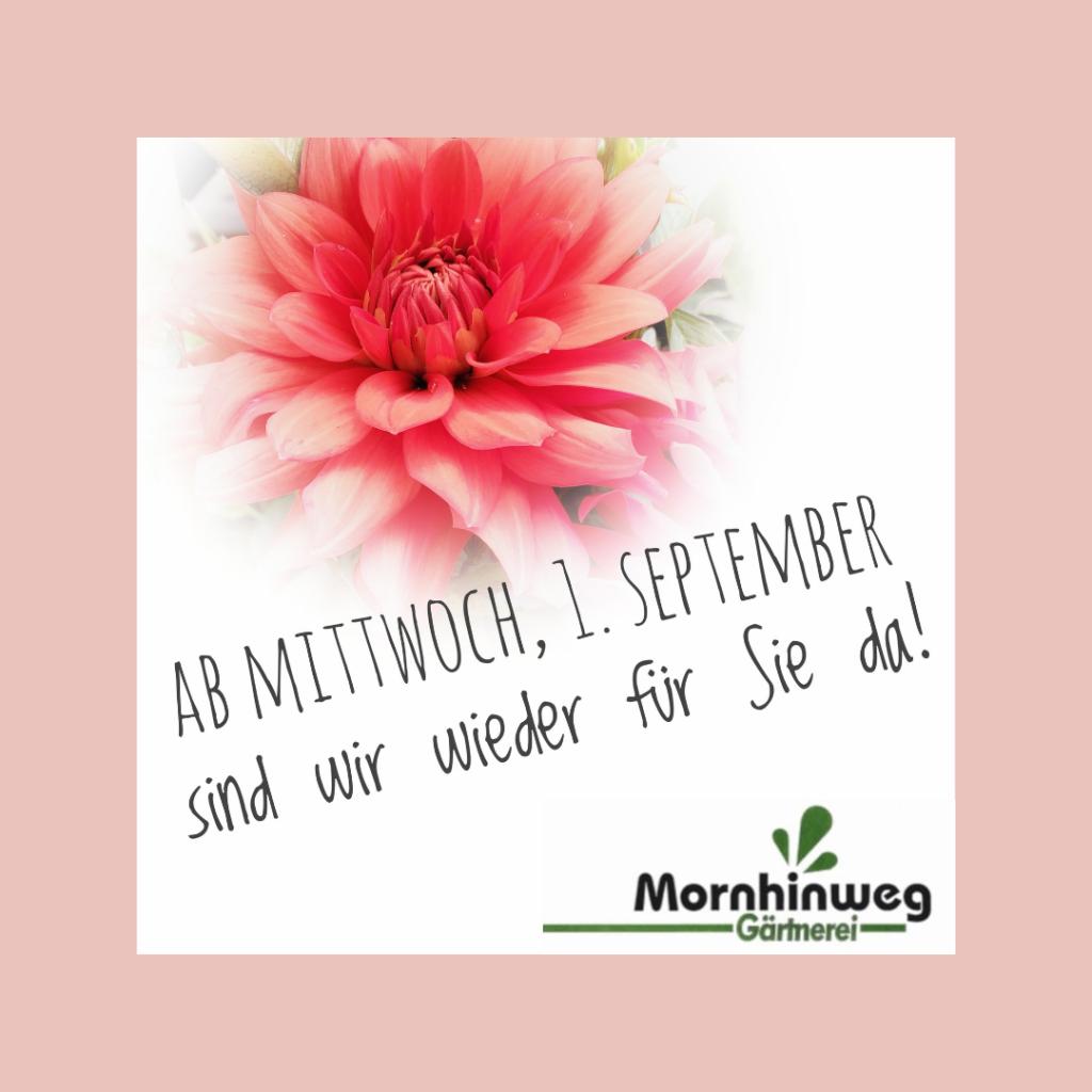 Ab Mittwoch, 1. September sind wir wieder für Sie da!